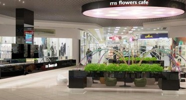 ITIS Flowers Cafe в ТРЦ Караван