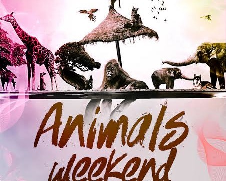 ANIMALS WEEKEND в Dali Park!