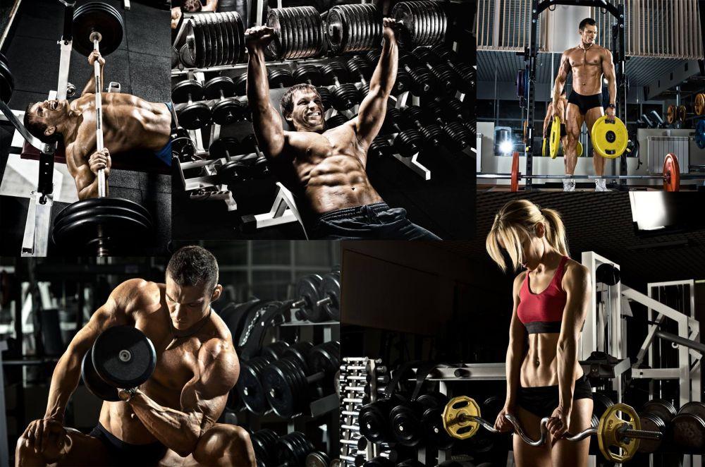 Спортивные витаминно-минеральные комплексы