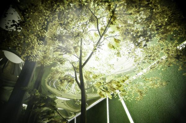 Цветущий сад в подземелье Нью-Йорка