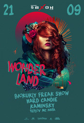 Wonderland night show